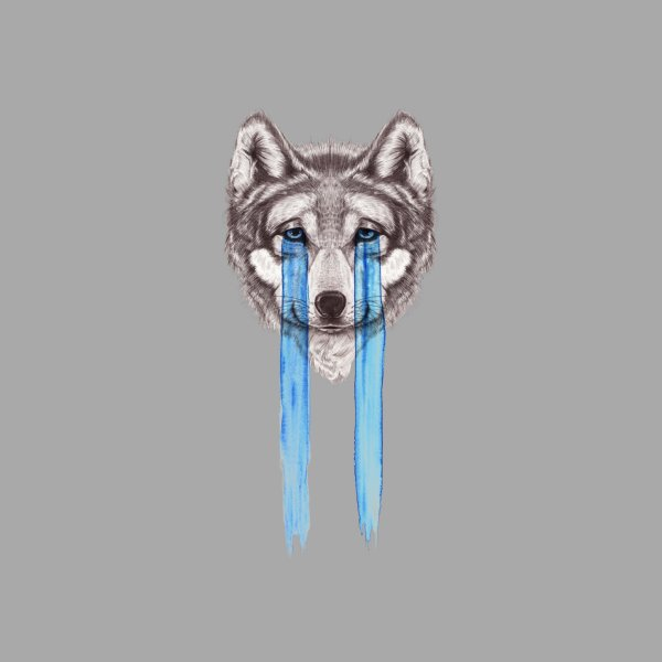 image for Don't Cry Wolf