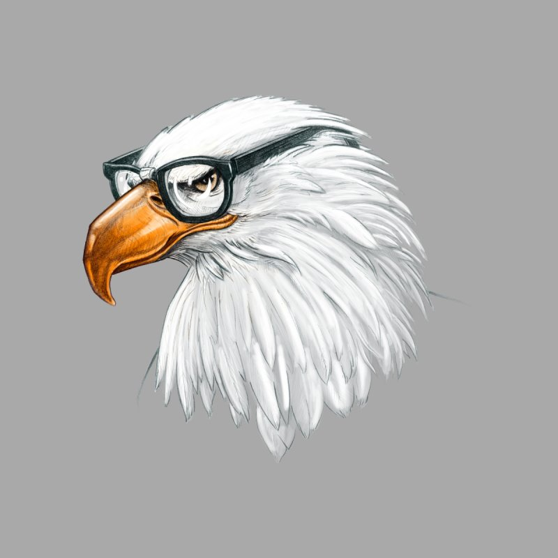 Eagle Eye   by Luke Wisner