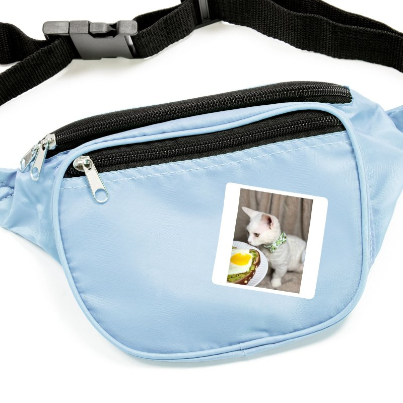 Hipster Cat Accessories Sticker by Luke the Lightbringer Artist Shop