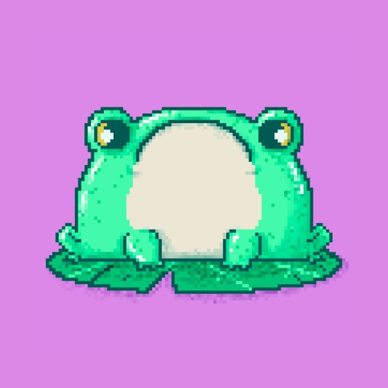Frog Accessories Notebook by Luis Romero