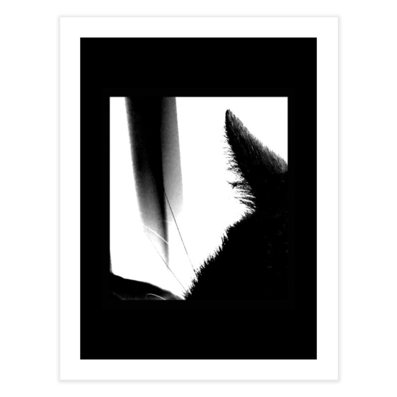 catscan Home Fine Art Print by Maat Haas: The Shop