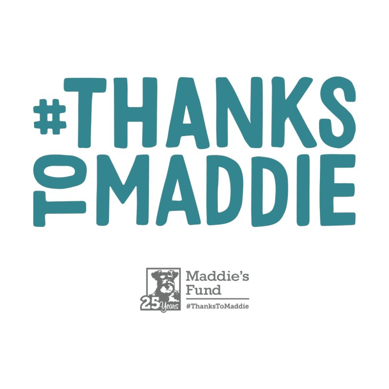 #ThanksToMaddie Light Colors by Maddie Shop