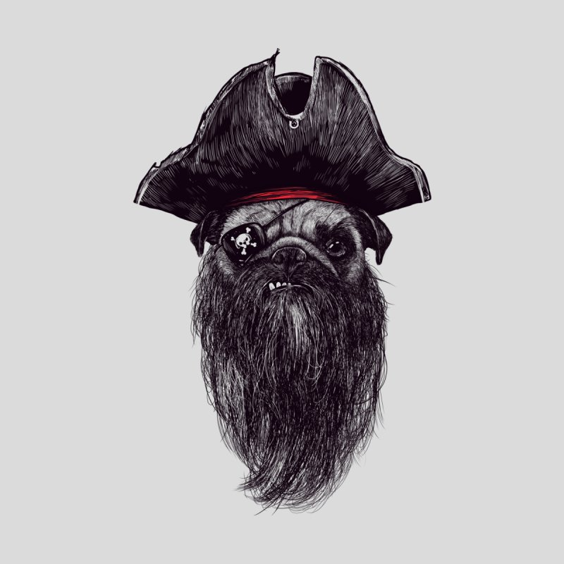 Captain Blackbone the Pugrate   by MadKobra