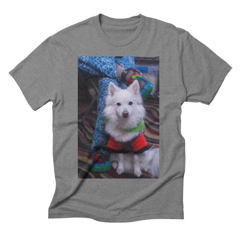 Joey The Magical Dog Colorful Men's Triblend T-Shirt by Joey The Magical Dog