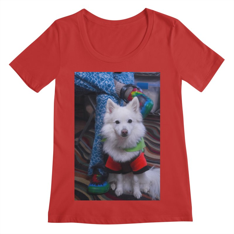 Joey The Magical Dog Colorful Women's Regular Scoop Neck by Joey The Magical Dog