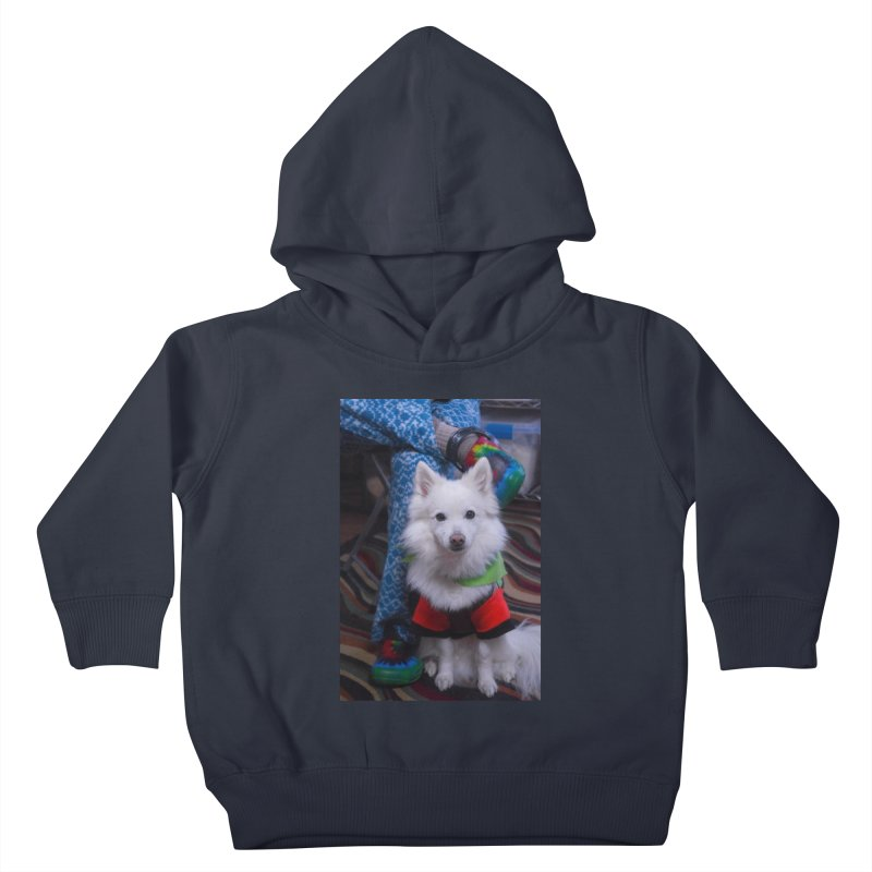 Joey The Magical Dog Colorful Kids Toddler Pullover Hoody by Joey The Magical Dog