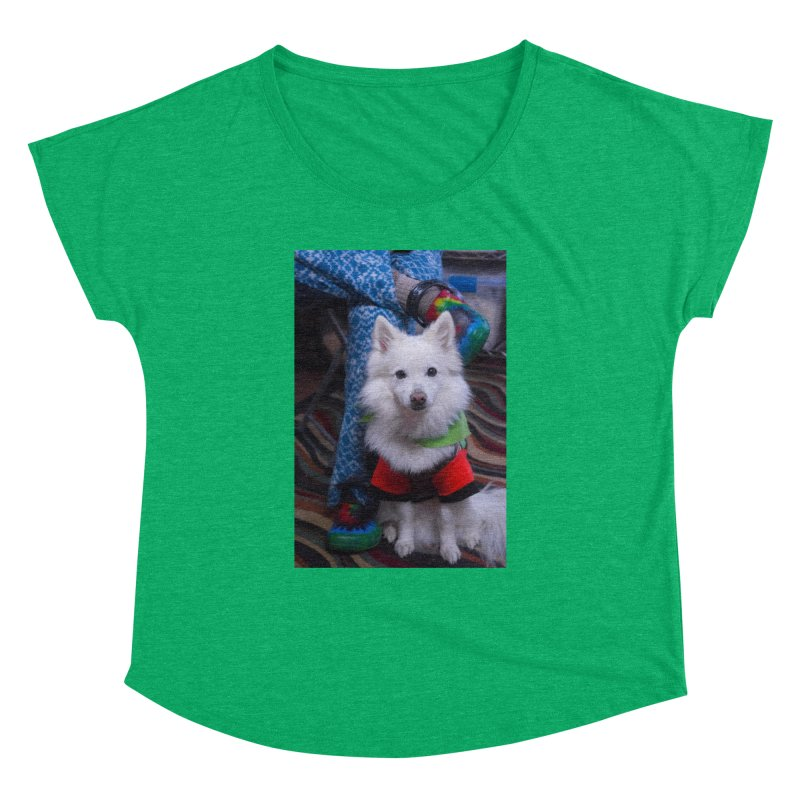 Joey The Magical Dog Colorful Women's Dolman Scoop Neck by Joey The Magical Dog