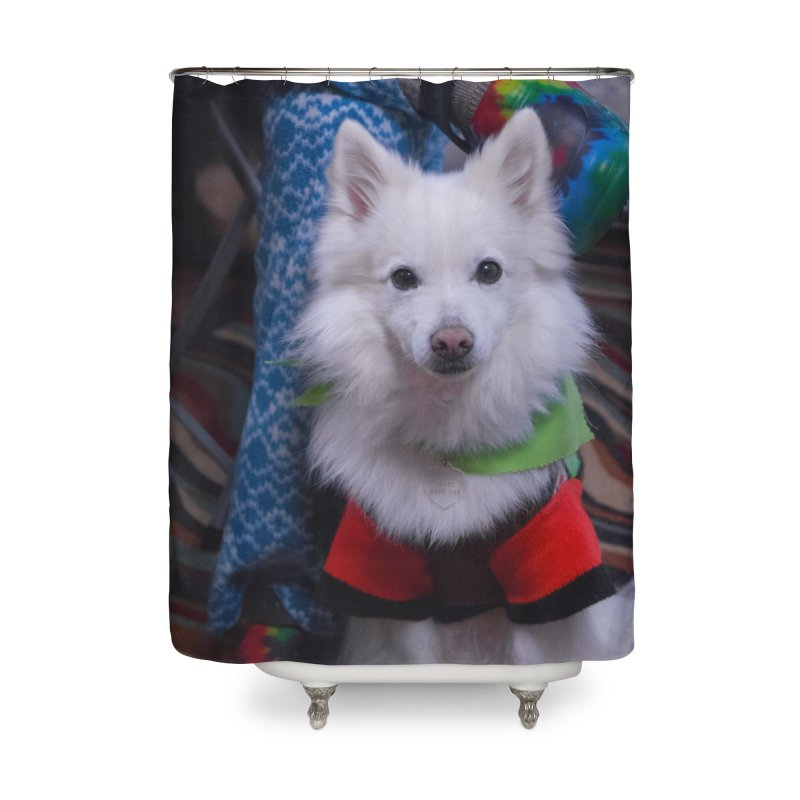 Joey The Magical Dog Colorful Home Shower Curtain by Joey The Magical Dog