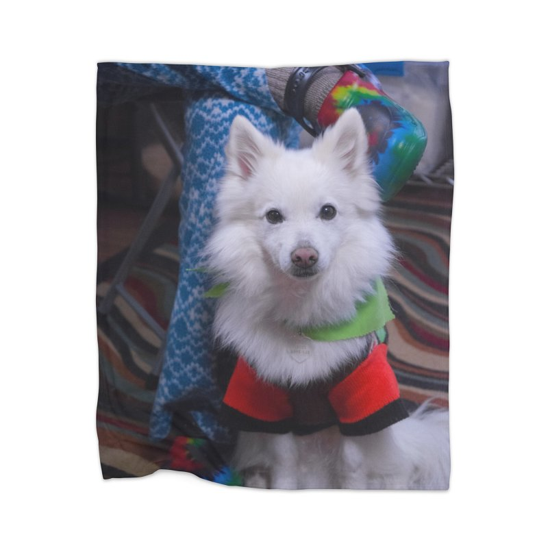 Joey The Magical Dog Colorful Home Blanket by Joey The Magical Dog