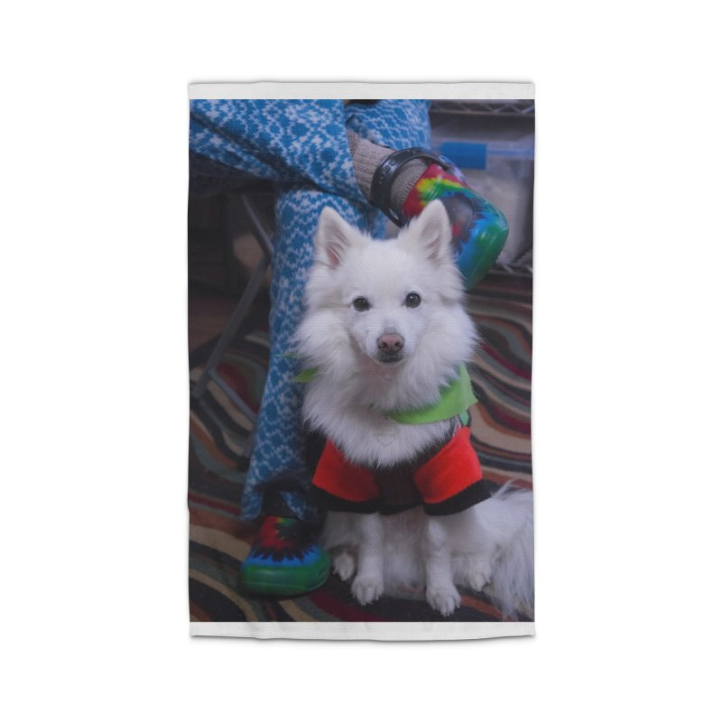 Joey The Magical Dog Colorful Home Rug by Joey The Magical Dog