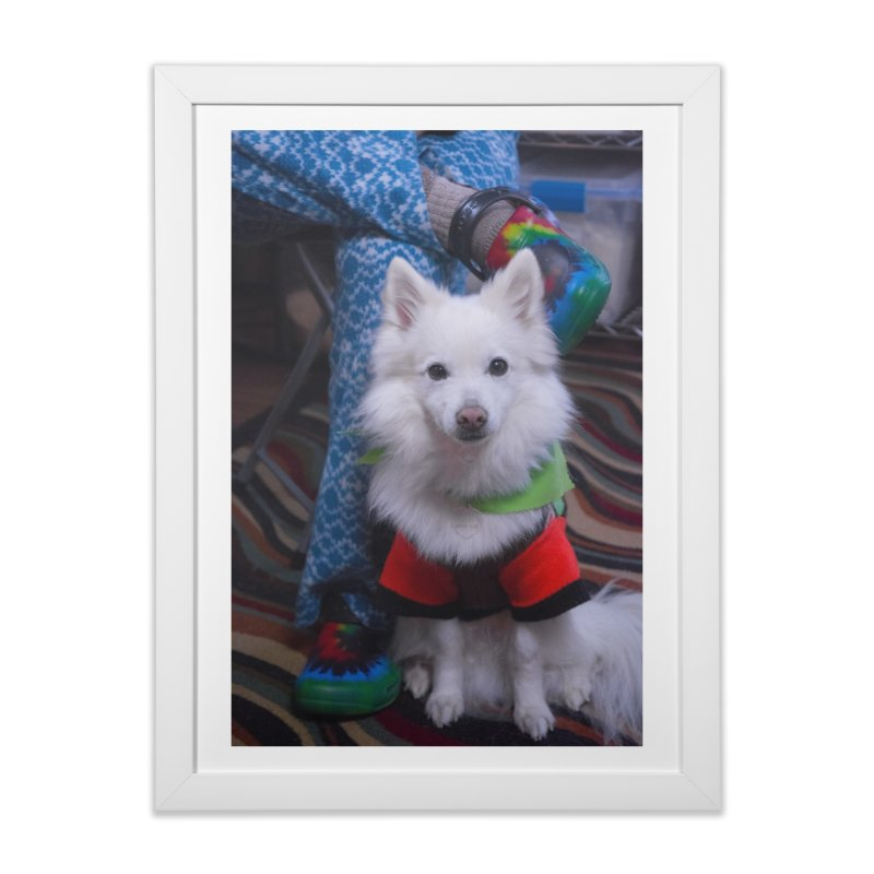 Joey The Magical Dog Colorful Home Framed Fine Art Print by Joey The Magical Dog