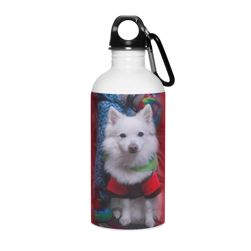 Joey The Magical Dog Colorful Accessories Water Bottle by Joey The Magical Dog