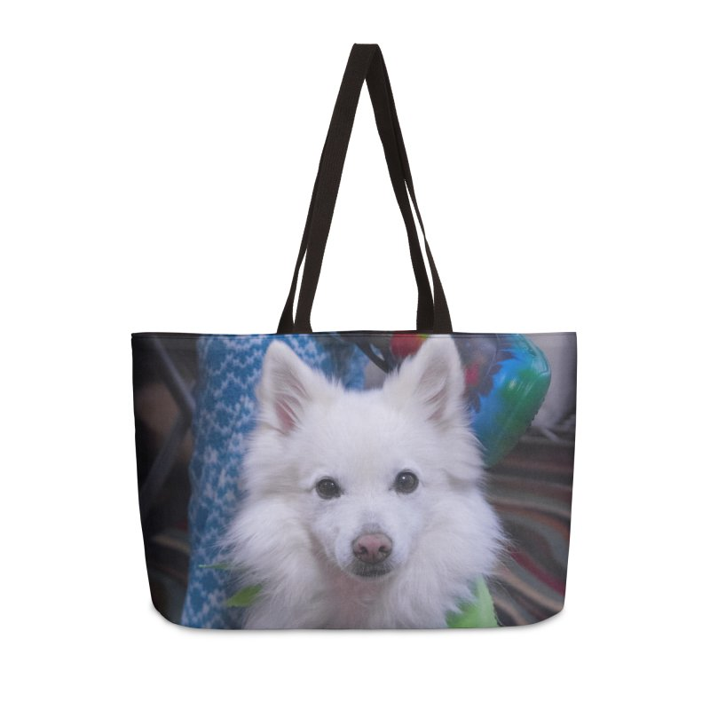Joey The Magical Dog Colorful Accessories Bag by Joey The Magical Dog