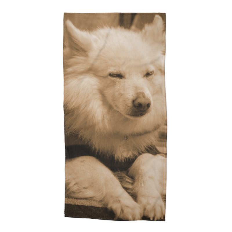 Joey Asleep Sepia Tone Accessories Beach Towel by Joey The Magical Dog