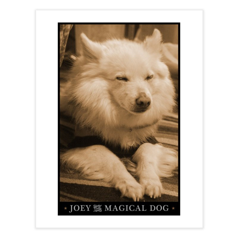 Home None by Joey The Magical Dog