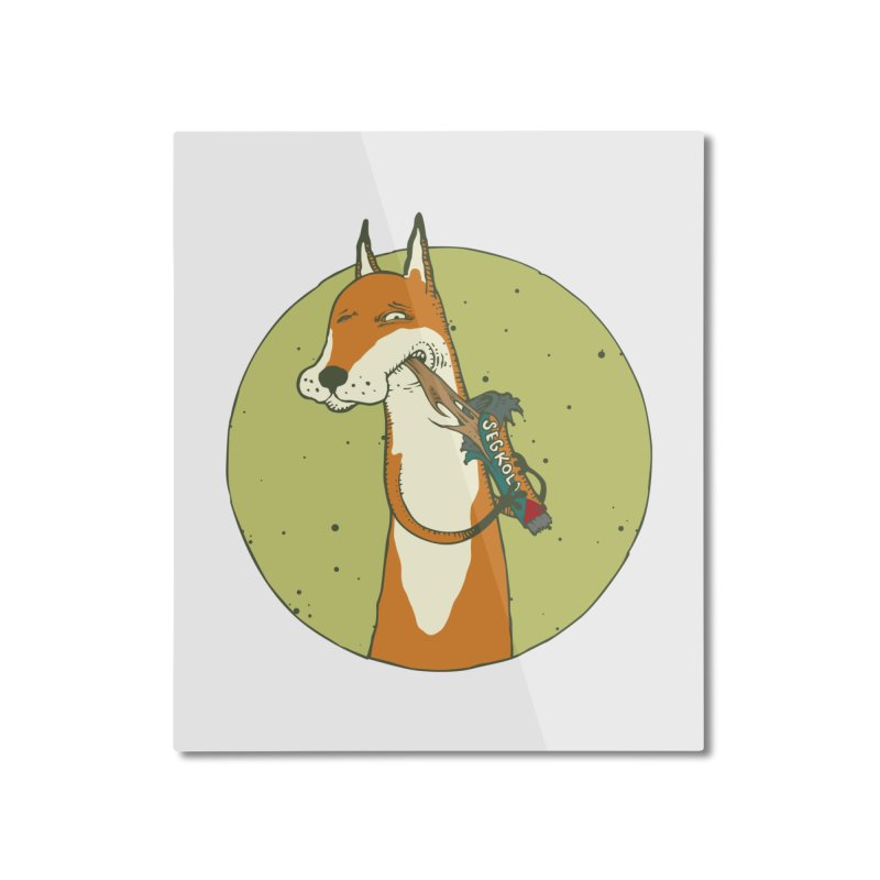 Fox vs toffee Home Mounted Aluminum Print by Magnus Blomster