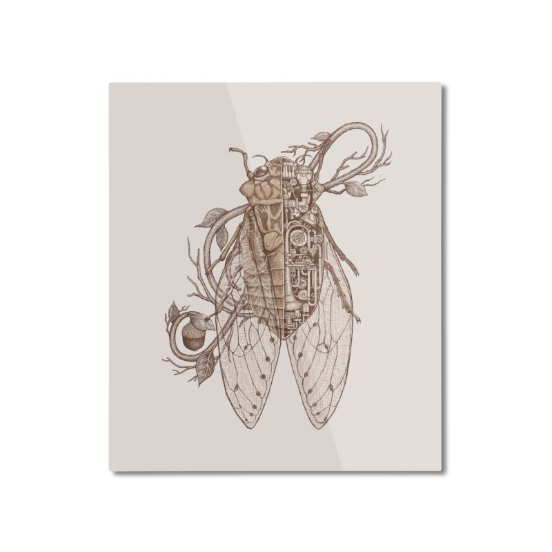 anatomy of cicada Home Mounted Aluminum Print by makapa's Artist Shop