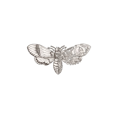 Design for death head moth sci-fi