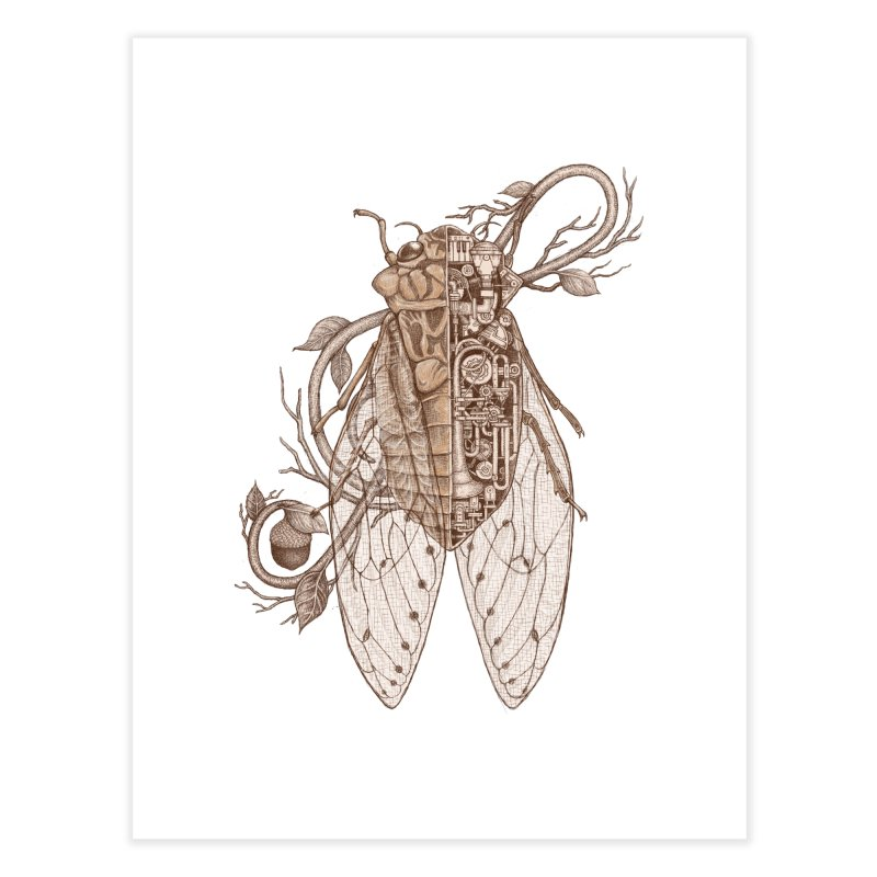 Anatomy of cicada Home Fine Art Print by makapa's Artist Shop