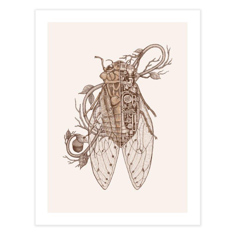 Anatomy of cicada Home Fine Art Print by makapa's Artist Shop
