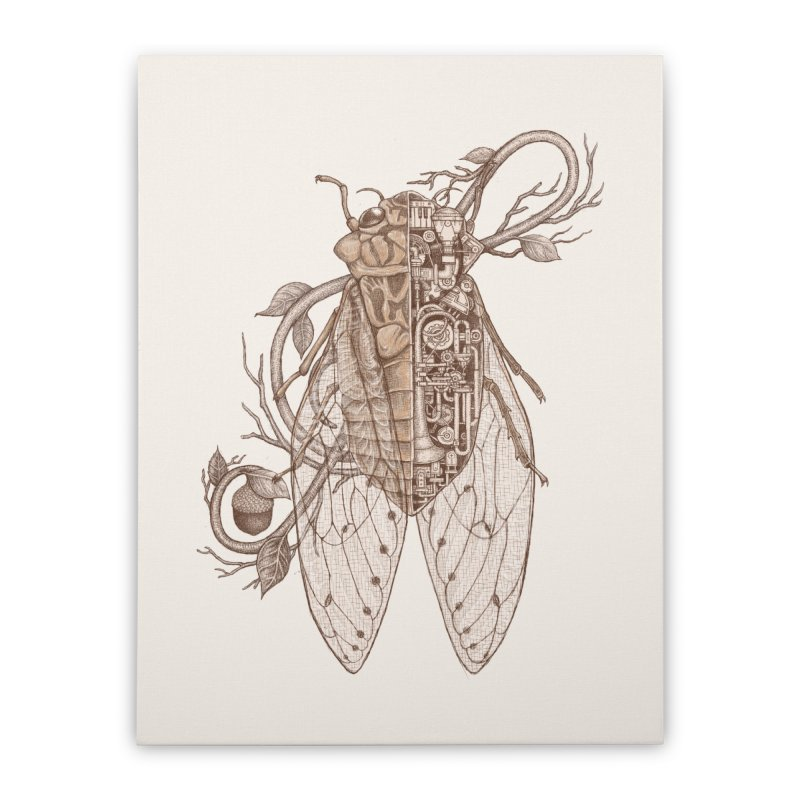 Anatomy of cicada Home Stretched Canvas by makapa's Artist Shop