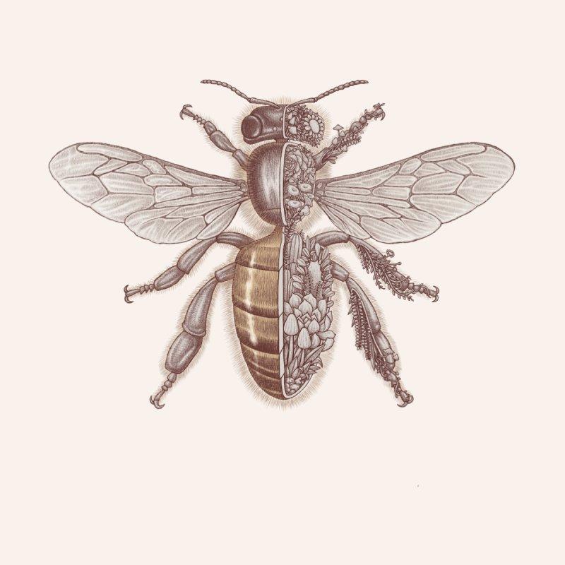 Bee anatomy Men's T-Shirt by makapa's Artist Shop
