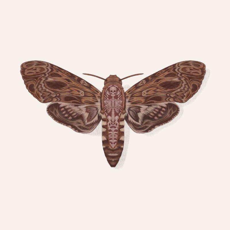 Death head moth anatomy Women's Scoop Neck by makapa's Artist Shop