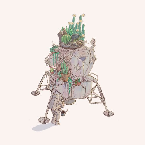 Design for Astronaut's garden