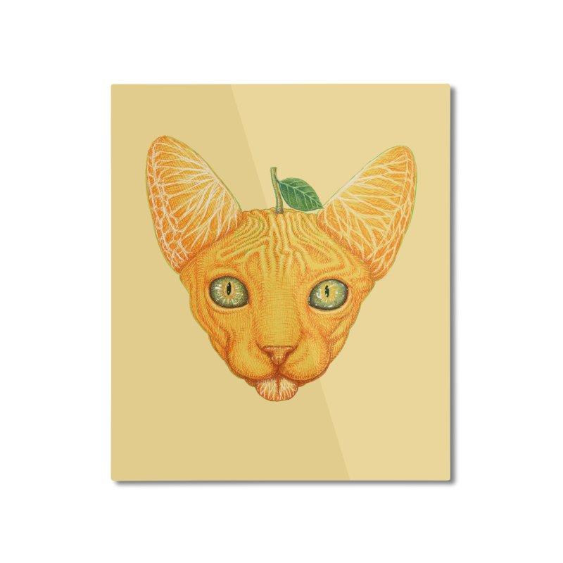 Orange cat Home Mounted Aluminum Print by makapa's Artist Shop