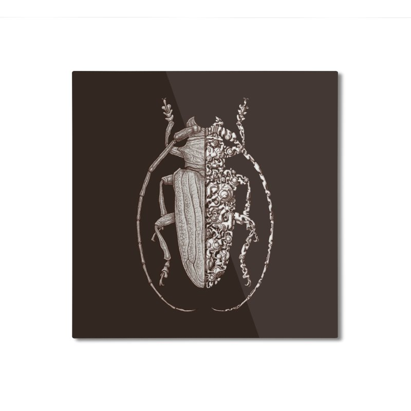 Sternotomis sci-fly Home Mounted Aluminum Print by makapa's Artist Shop