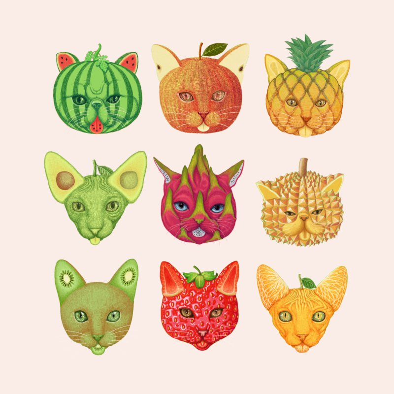 cat or fruit Home Stretched Canvas by makapa's Artist Shop