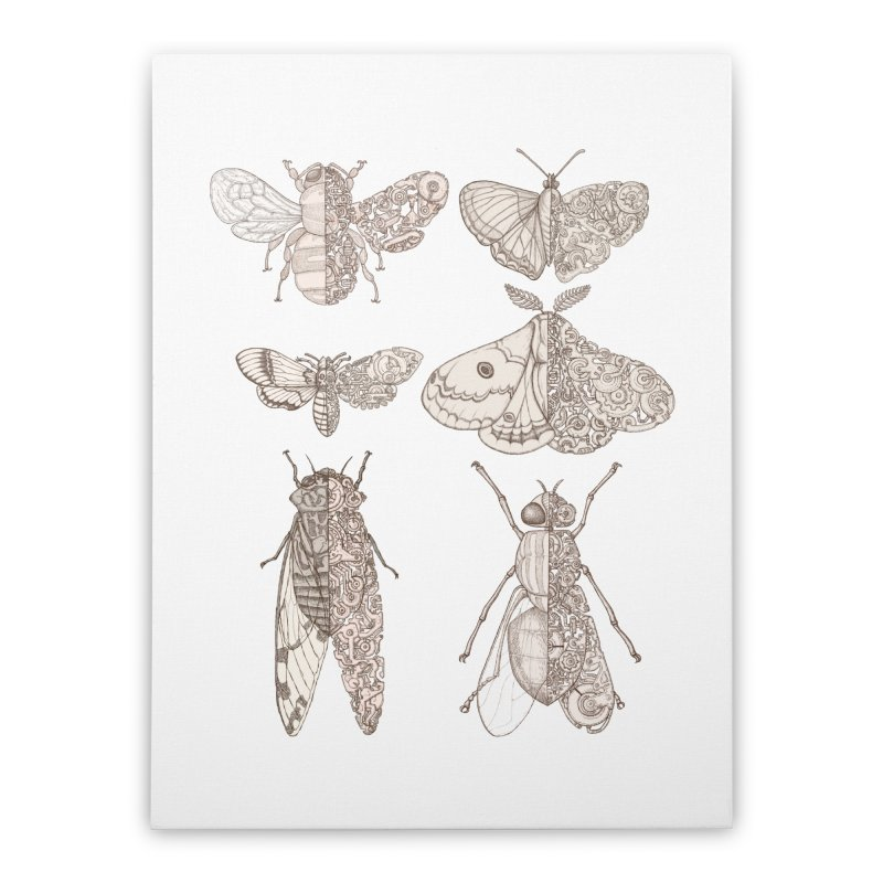 sci-fly collection Home Stretched Canvas by makapa's Artist Shop