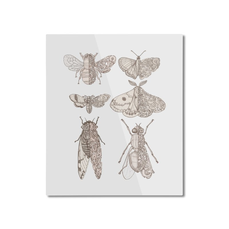 sci-fly collection Home Mounted Aluminum Print by makapa's Artist Shop
