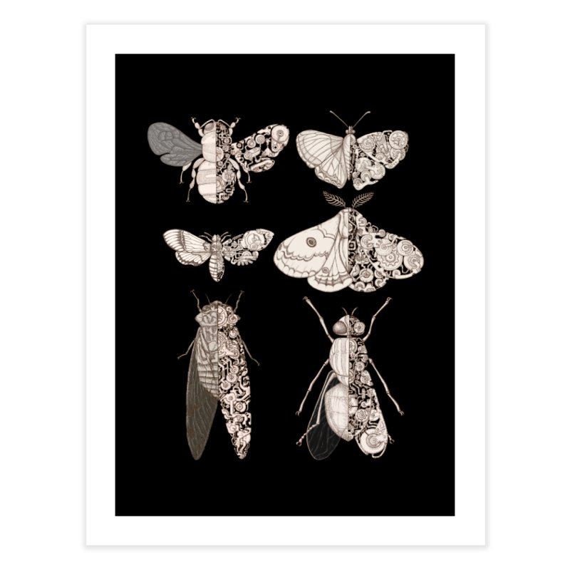 sci-fly collection Home Fine Art Print by makapa's Artist Shop
