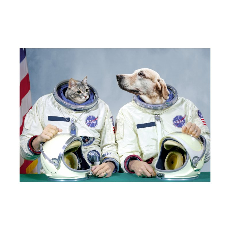 Best Friend Astronauts Home Fine Art Print by Mario Maps