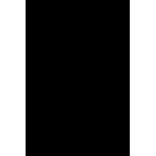 martinskowsky Logo