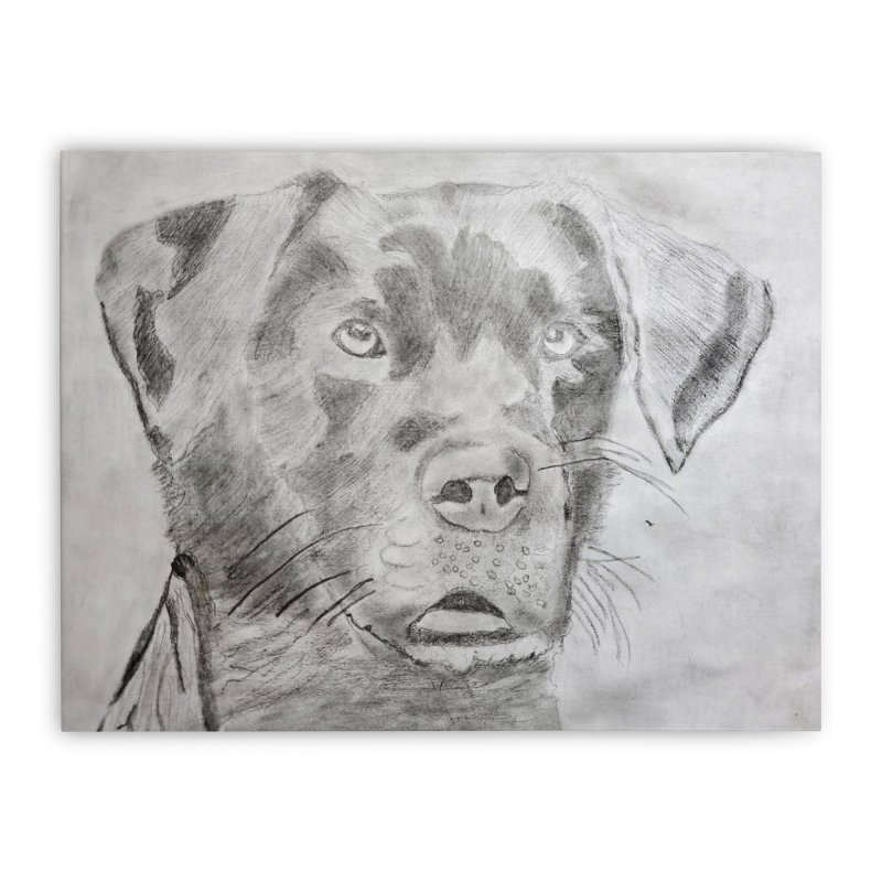 Home None by Maryland SPCA's Artist Shop