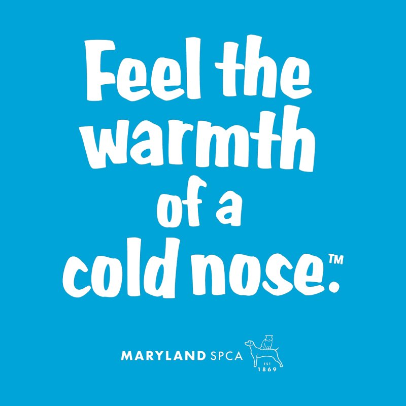 Feel the Warmth - MD SPCA Design Accessories Button by Maryland SPCA's Artist Shop