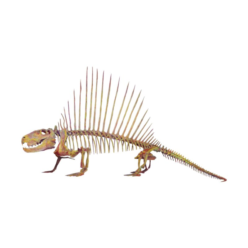 Dimetrodon by May Jernigan's Artist Shop