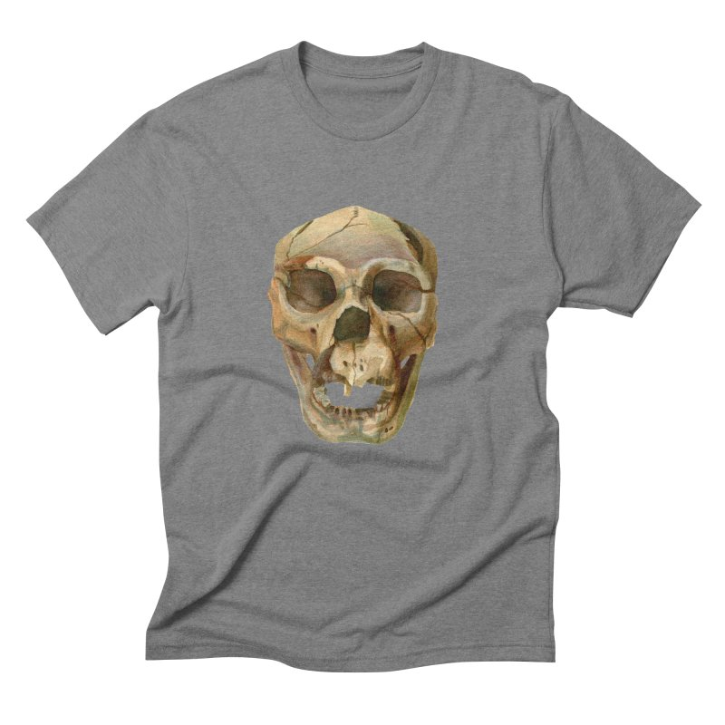 Homo heidelbergensis Men's Triblend T-Shirt by May Jernigan's Artist Shop