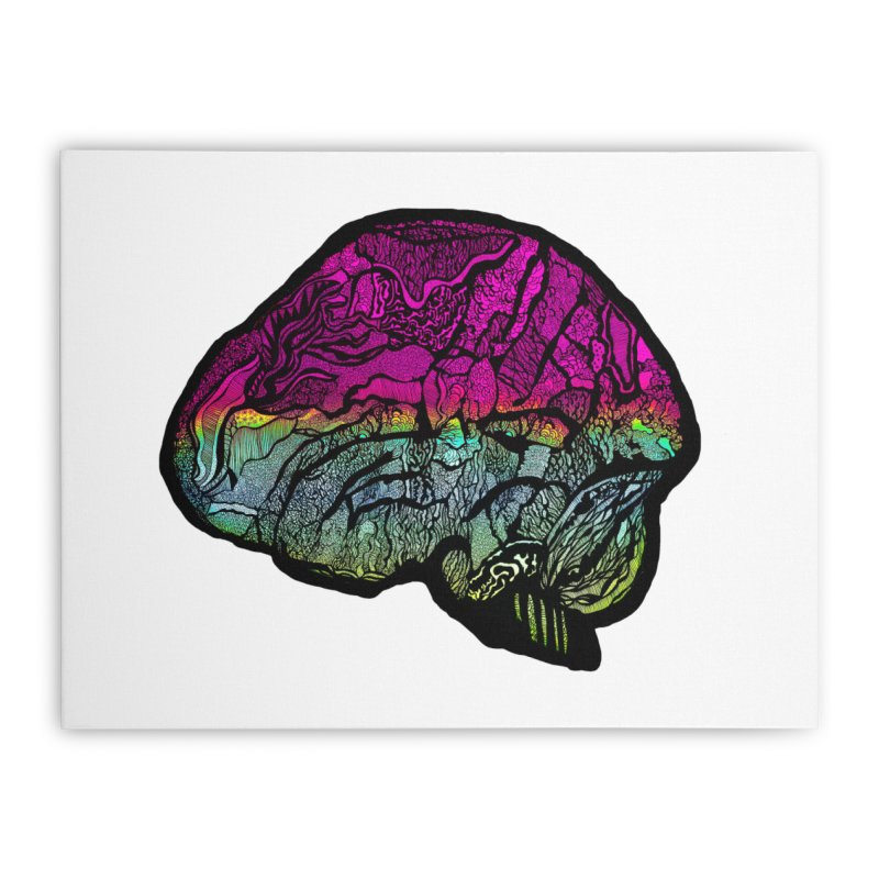 Solo Brain Home Stretched Canvas by MCGILSKY DESIGN SHOP