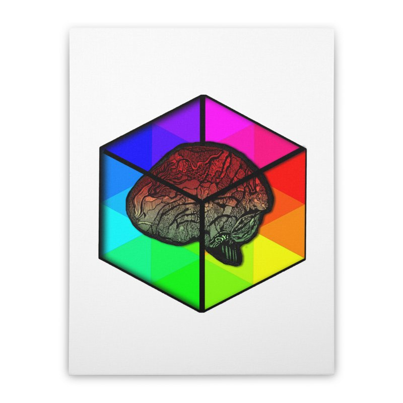 Brain Cube on Color Home Stretched Canvas by MCGILSKY DESIGN SHOP