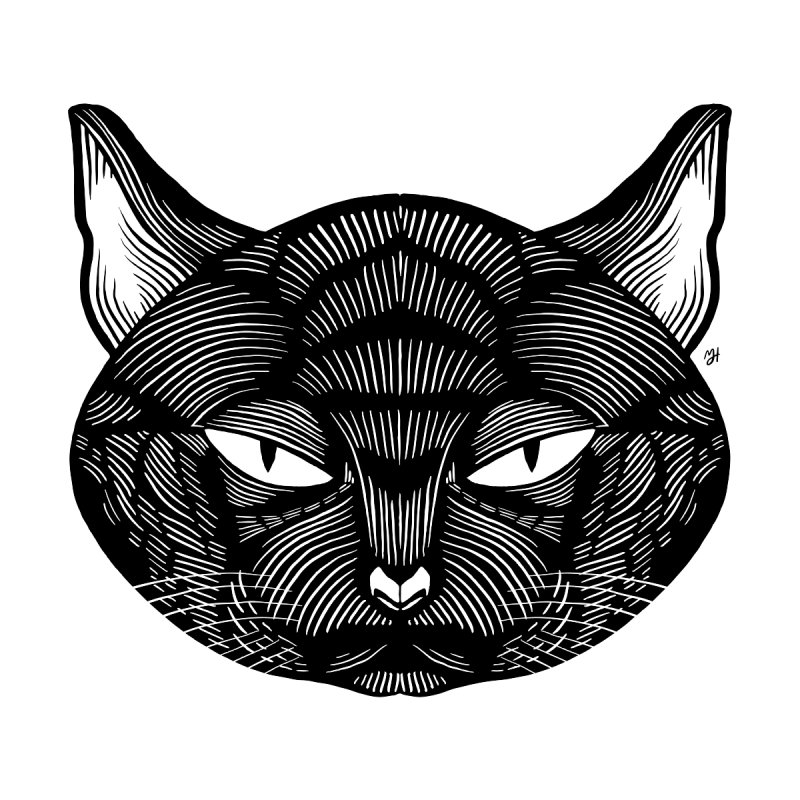 Spoooky Black Cat by Michael J Hildebrand's Artist Shop