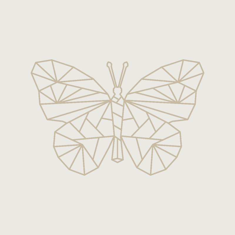 Geometric Butterfly by Miezerie
