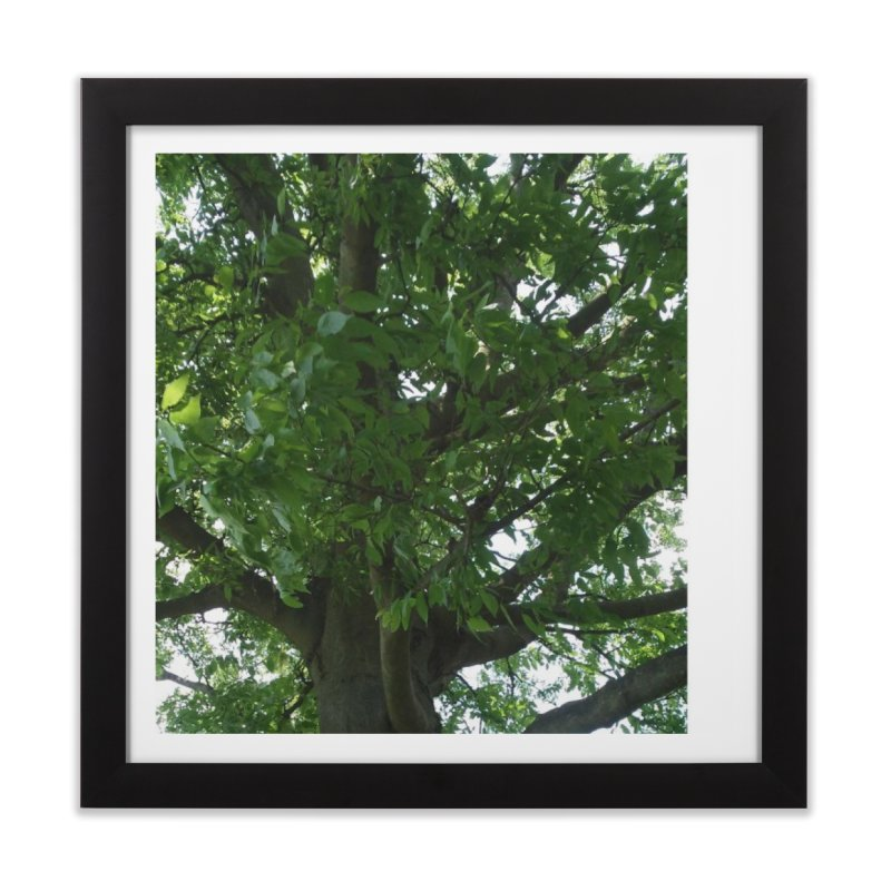 Tree Top Home Framed Fine Art Print by Mind-art Passion