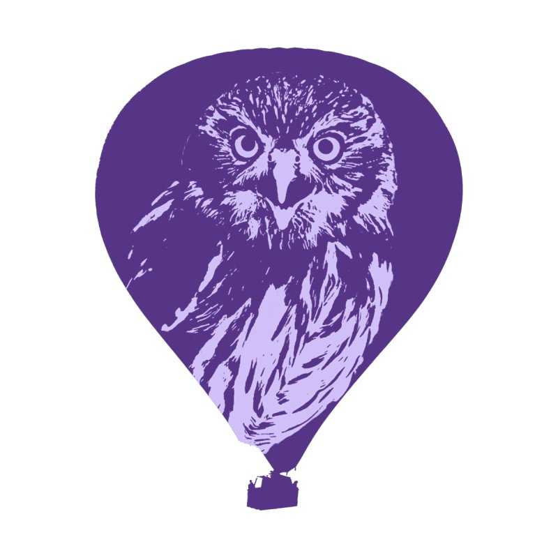 An owl in an air balloon None  by Mirabelle Digital Art shop
