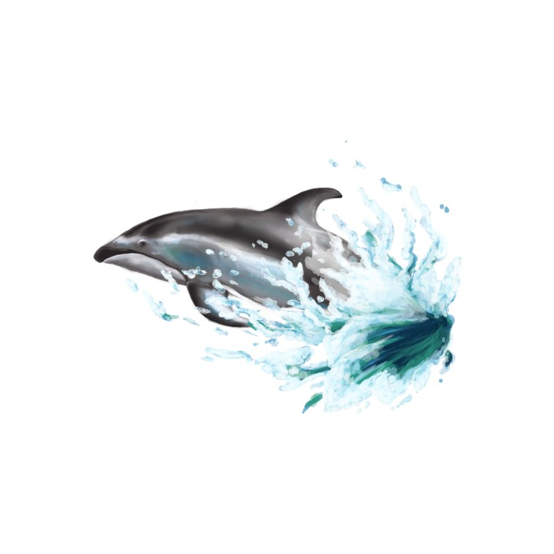 Pacific White-Sided Dolphin  Women's T-Shirt by mirrortail's Shop