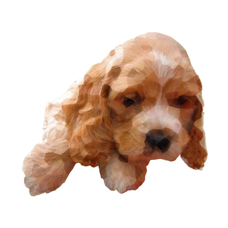 Cocker Spaniel Poly None  by mirrortail's Shop