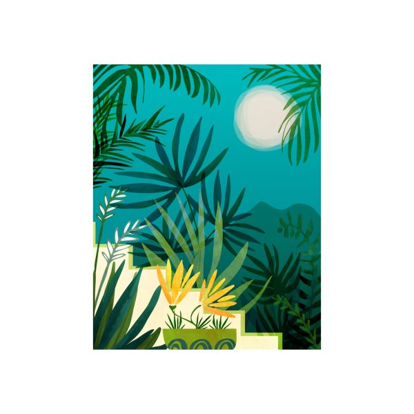 image for Rainforest With Moonlight