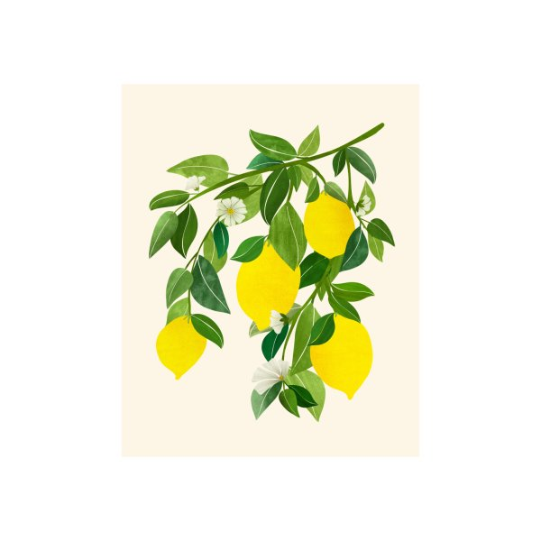 image for Sunny Lemons Botanical Illustration